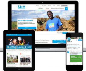 SNV online campaign